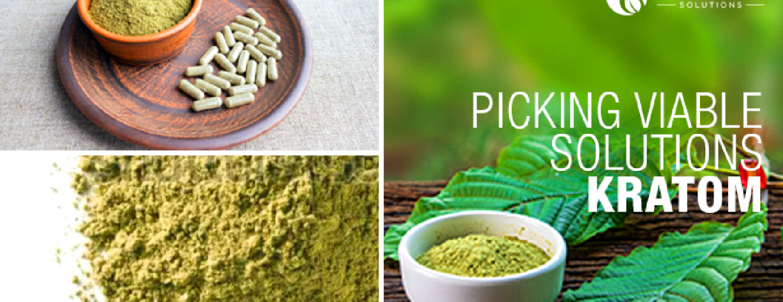Prime 10 Tricks To Build Your Own Kratom Extract